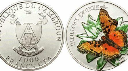 Экзотическая бабочка «Charaxes Fournirae» в формате 3D
