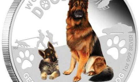 Последняя монета серии «Служебные собаки»