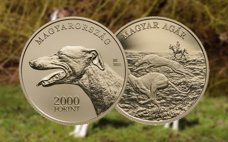 Борзая на монете 2 000 форинтов